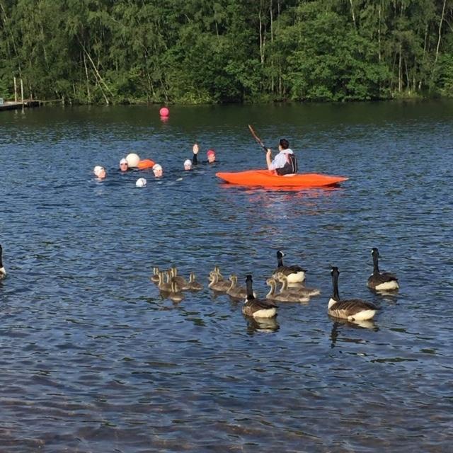 Horseshoe Lake Triathlon